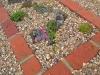 contemporary-flat-rock-garden