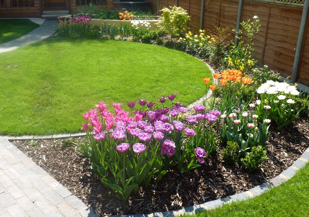 New garden project tm garden design for Latest garden design
